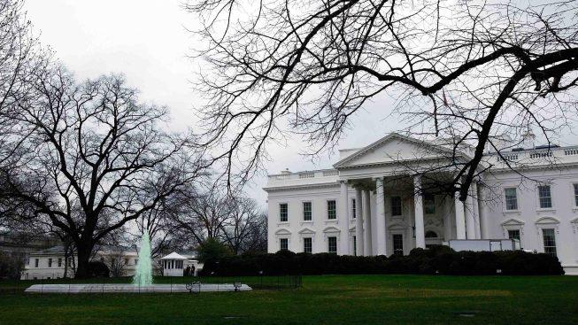 Plaga de cucarachas y ratones en comedores de la Casa Blanca