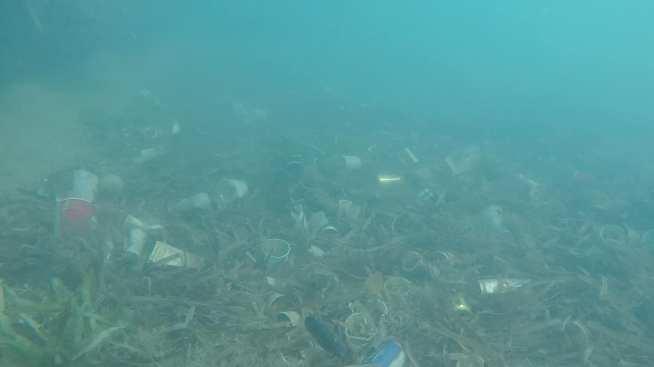 Playa Buyé en Cabo Rojo queda repleta de basura