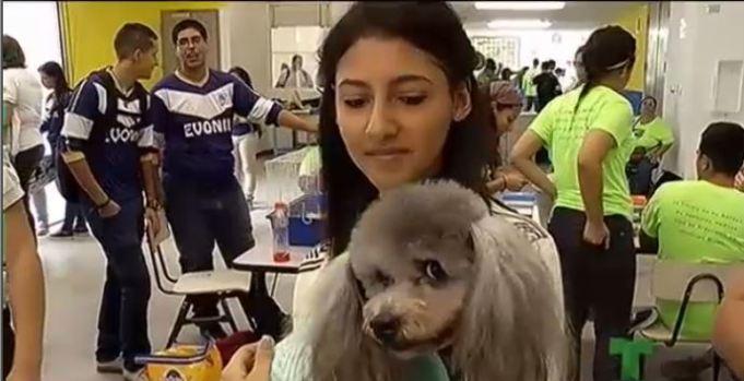 Celebran el Día del Planeta con sus mascotas en la escuela