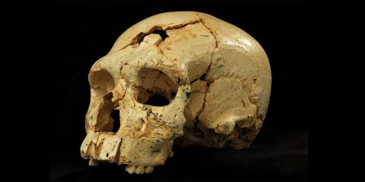 Cráneo aparece en oficina de Cementerio en Yauco
